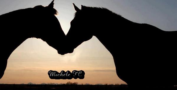Découpe chevaux ( 5 points) 519968chevauxdiane15092014larasoft