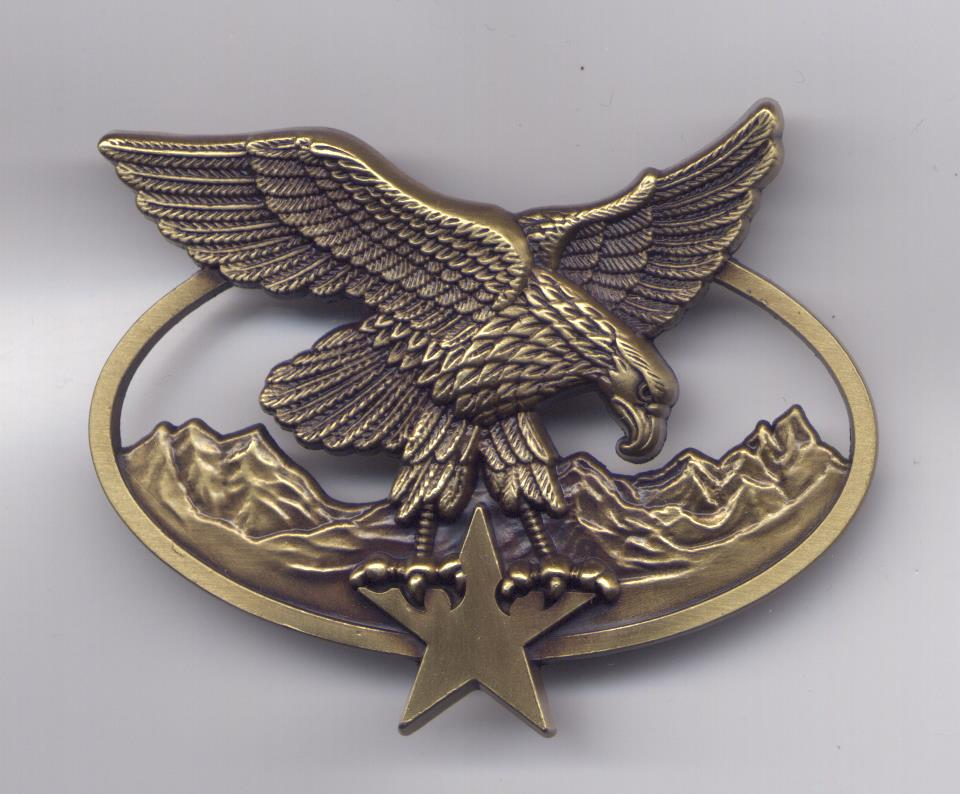 Insignes de brevet des troupes de montagne 521361001