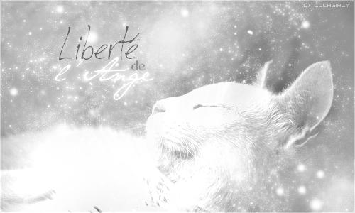 Galerie du Soleil ♪ 525068Liberty