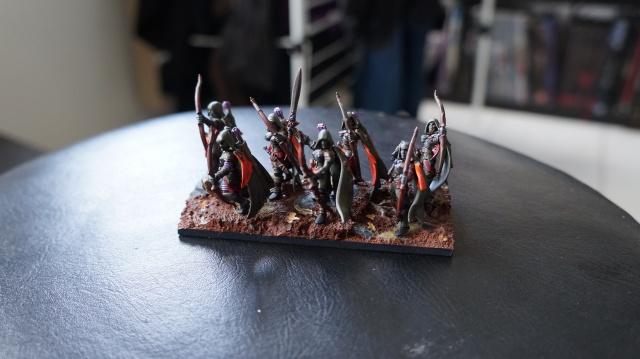 [KOW][Elfe] Les gardiens du sombre bosquet. 525684DSC00168