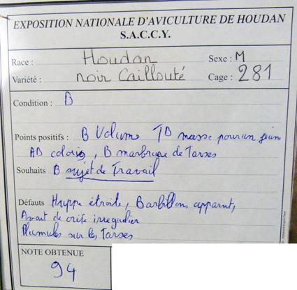 exposition d'aviculture Foire ST MATTHIEU 27 et 28 Septembre 2014 - Page 3 528697P1150593