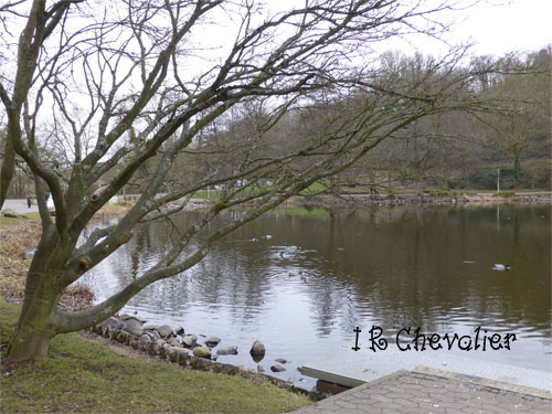 Promenade en hiver.(Poésie et photos) 534341P1080393w