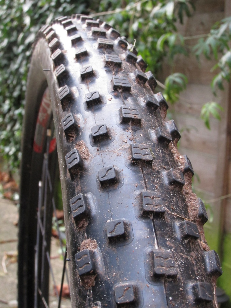 MAXXIS - Page 5 5369353IMG5629