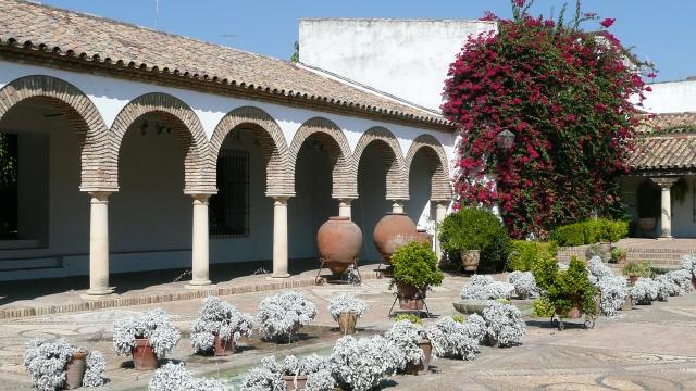 Andalousie Octobre 2011 538208P1100546