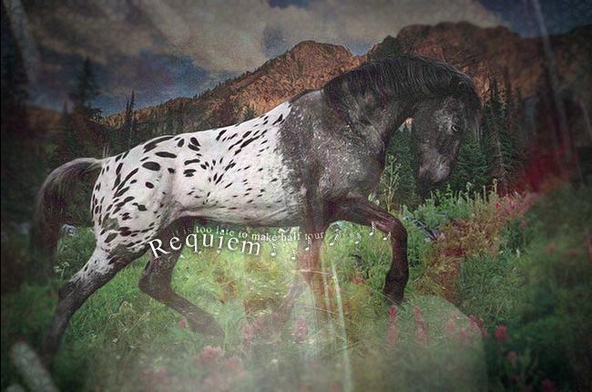 Requiem - Etalon - Sunset Mix 544520untruth1