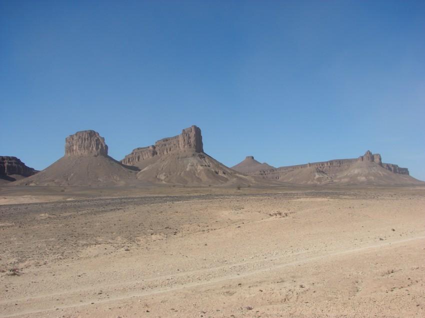 Le Grand Sud du Maroc - II 545713142