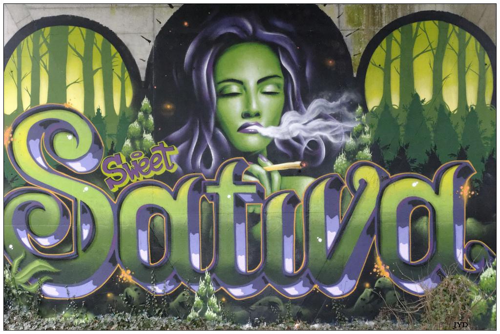 Graffs... 549948LaSevreNantaise08