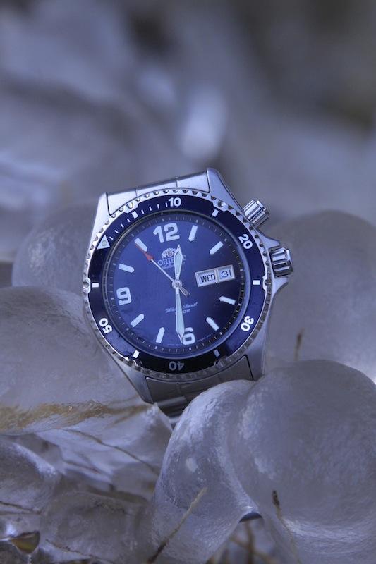 Orient Blue Mako en terre de glace 549961MG3794