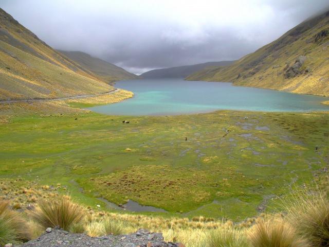 Les écosystèmes boliviens en photos... 554260bofedale4300m6
