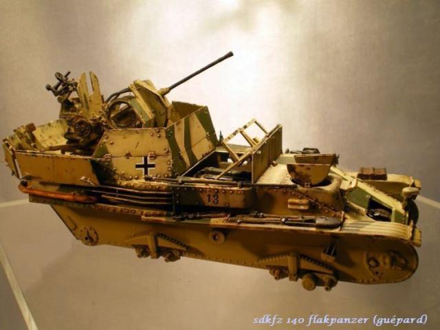 sd.kfz 140 flakpanzer (gépard) maquette Tristar 1/35 560679IMGP3205
