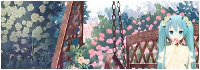 Le Jardin du Noctambule