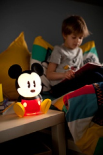 Disney Consumer Products 565939PD1
