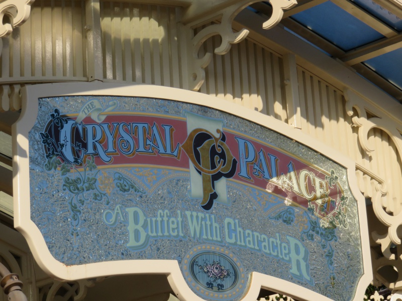 Walt Disney World + Universal Studios + Sea World + Busch Gardens Summer 2014 - Page 4 567726IMG0766