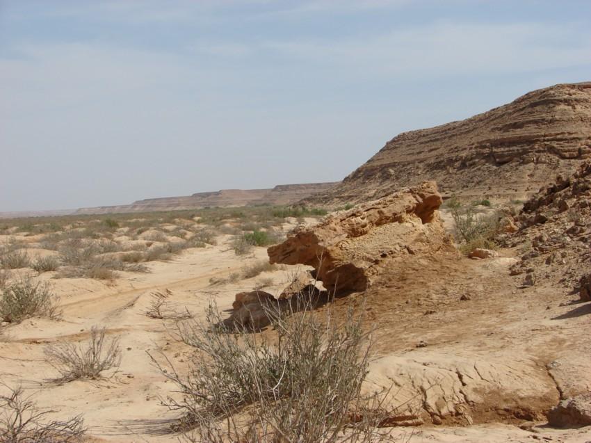 retour maroc 2012 - Page 2 569884046