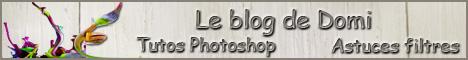 Forums/Sites à visiter/Autorisations 571843banniereblog