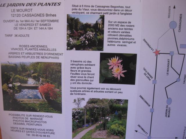 le jardin des plantes du mourot 573219IMG4854