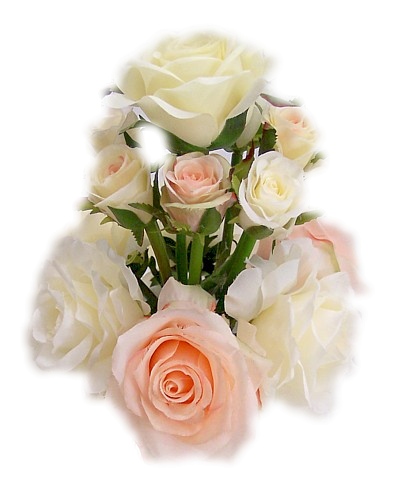 Tubes roses 5744320892cb0a