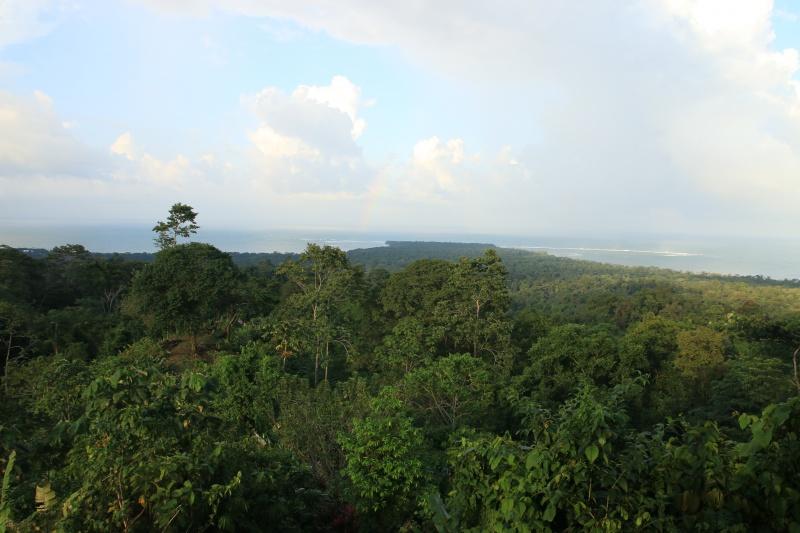 Nature au Costa Rica 576785IMG6386