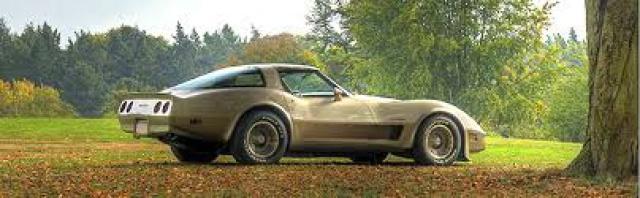 chevrolet corvette 1982 edition collector monogram au 1/8 - Page 2 582463imagescorvette