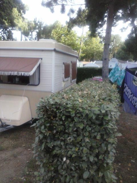 camping municipal le cadoret*** 586729040