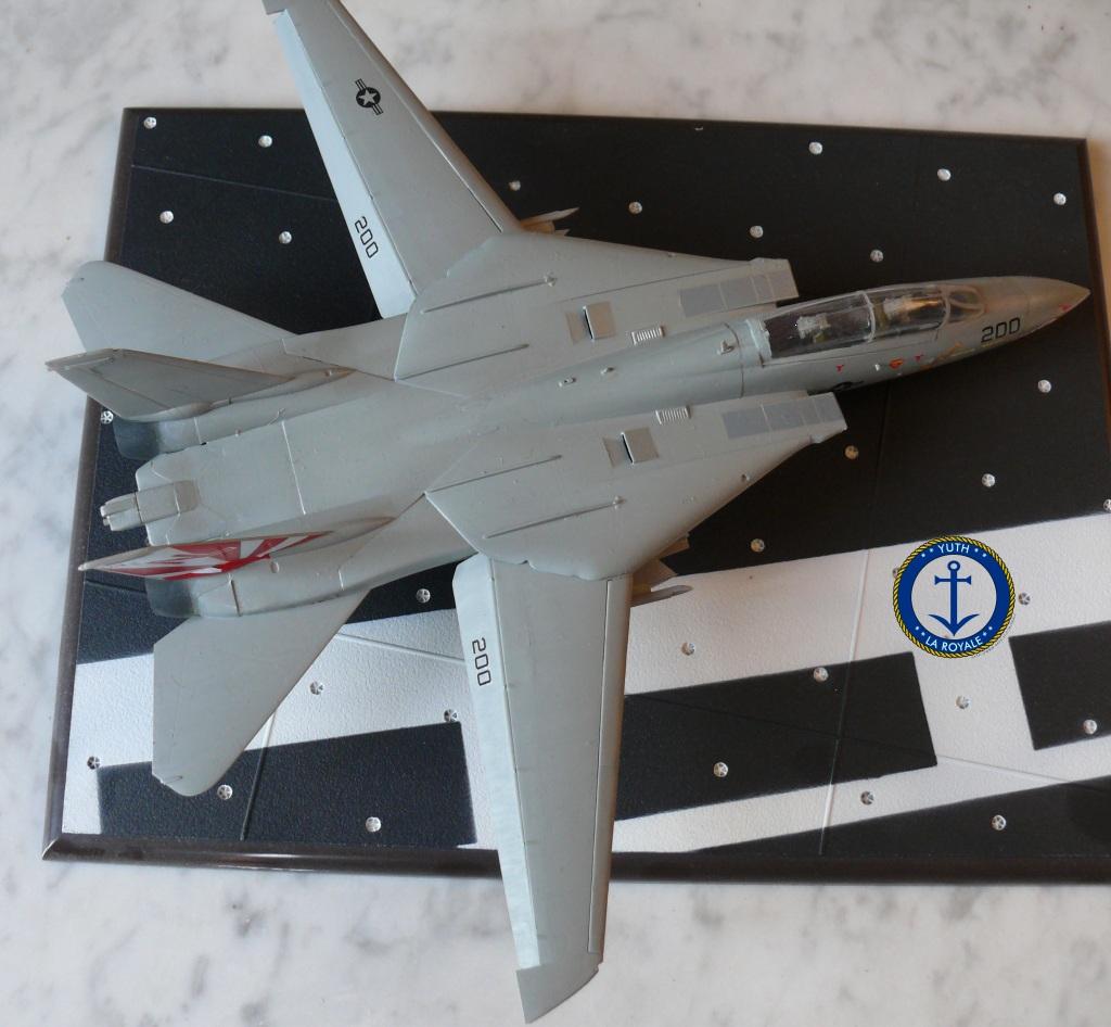 """F-14 Tomcat VF-111 """"Sundowners"""" 592594tomcat4"""