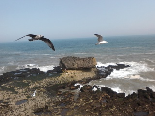 Essaouira.... 59434520120819114651
