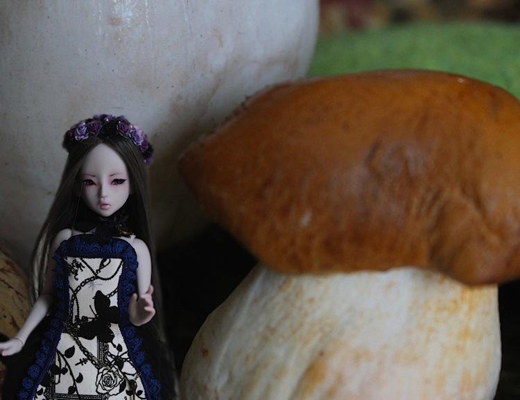 Nymeria (Sixtine Dark Tales Dolls) nouveau make-up p8 596390Alyssiartricie4