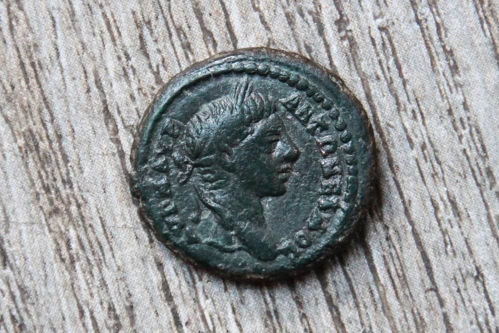 Petit bronze au cep de vigne d'Elagabal 596930IMG38711280x768