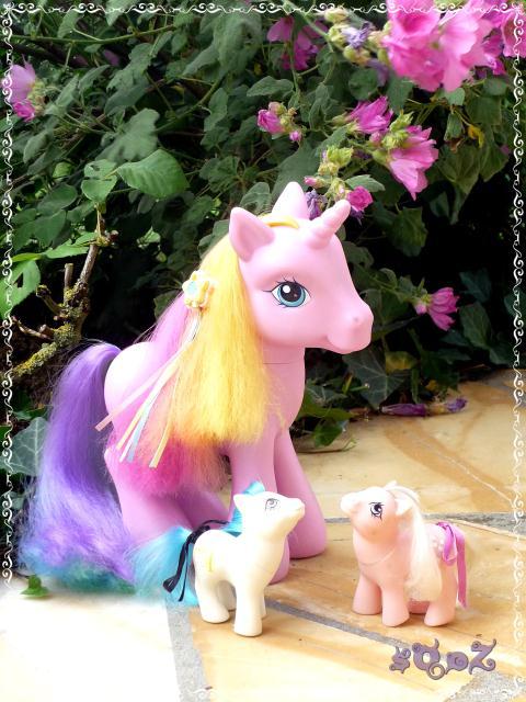 Les petits poneys de sOoZ - G1 à G5 602972P1150413