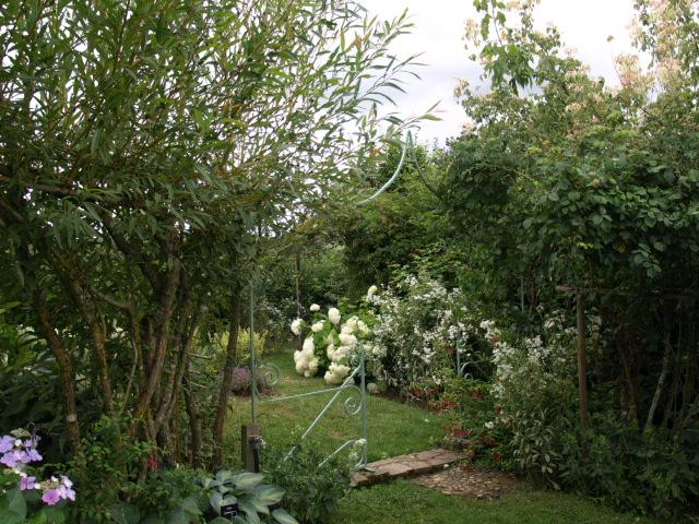 le jardin des plantes du mourot 608111P7202025