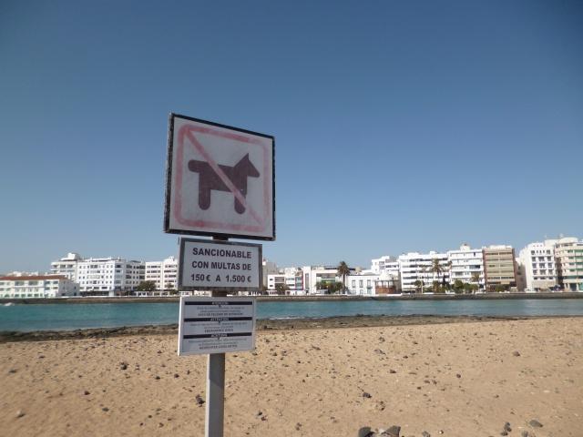 Lanzarote, l'île esthétique 610025P1040131