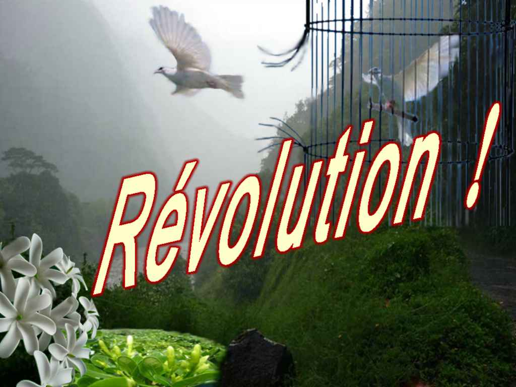 Polititanetia - Révolution ! 611126Rvolution