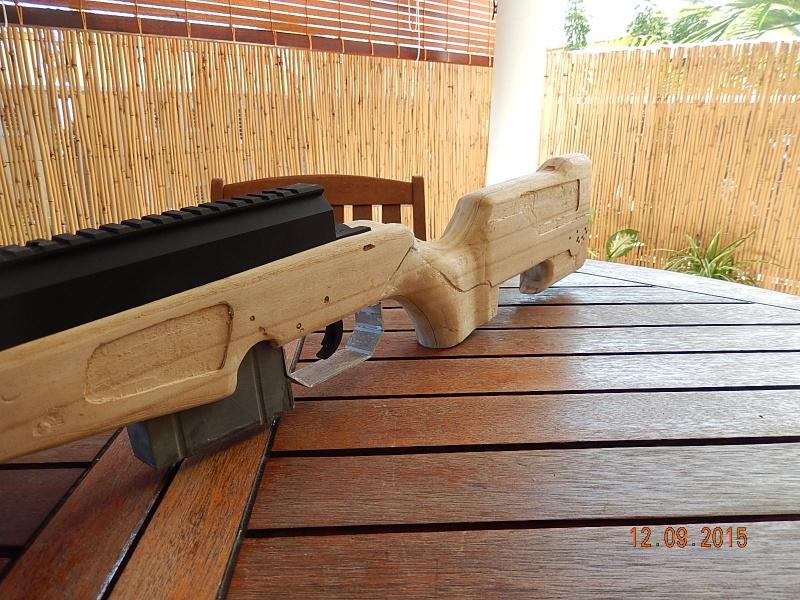 [custom] type 96 J.A.E crosse bois self made 611410DSCN4530