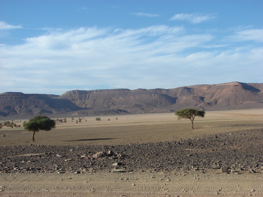 retour maroc 2012 - Page 2 613288168
