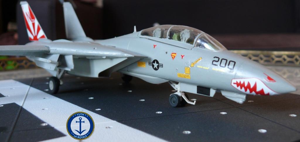 """F-14 Tomcat VF-111 """"Sundowners"""" 614619tomcat2"""