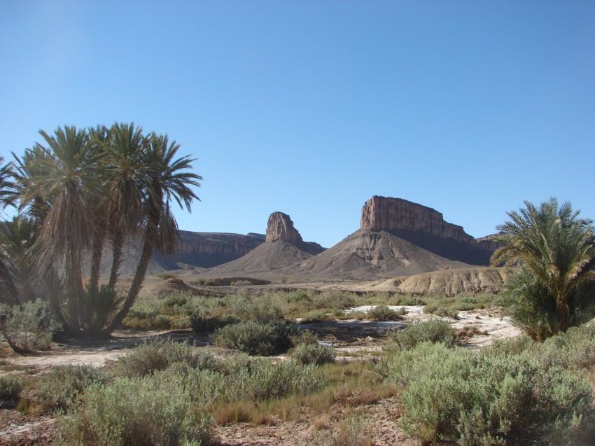 Le Grand Sud du Maroc - II 615241135