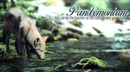 Pandémonium - Insolence de l'Hérétique 618528ENFIN2PNG