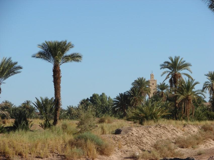 retour maroc 2012 - Page 2 627494153