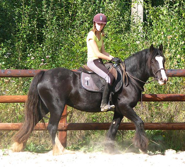 Black Opal et Rosie 636367IMG0594