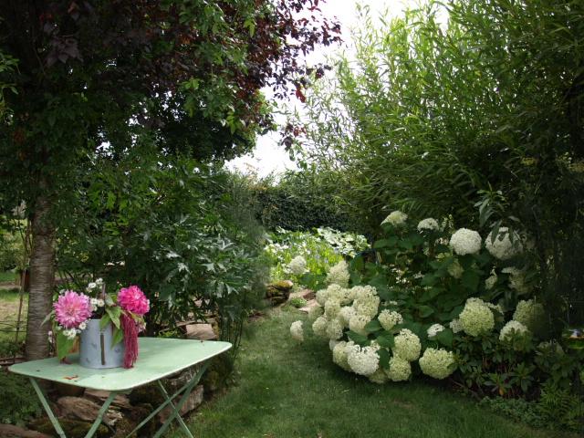 le jardin des plantes du mourot 638257P7202039
