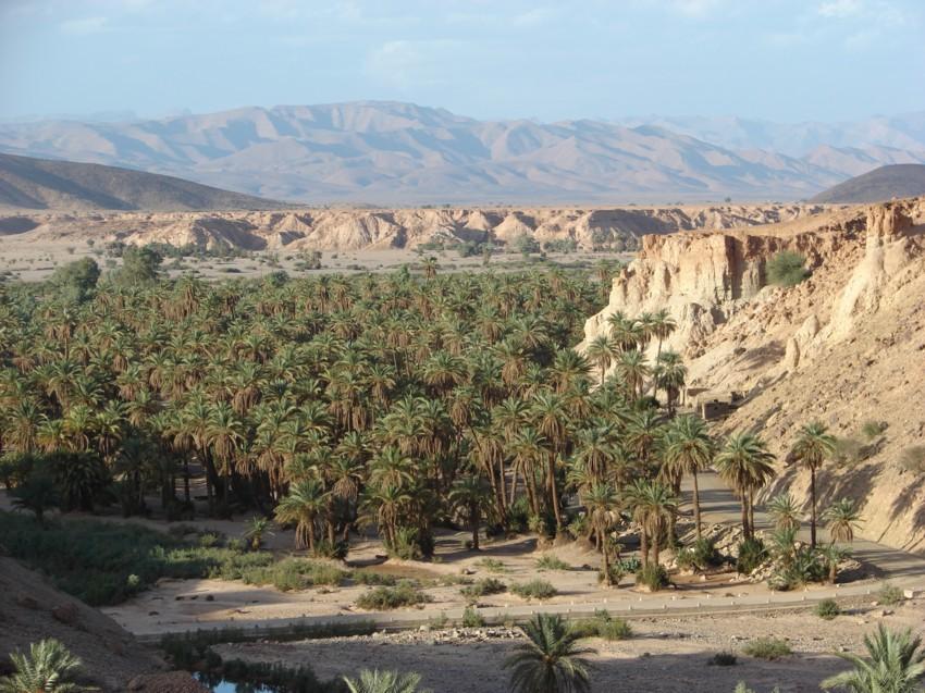 retour maroc 2012 - Page 2 642642124