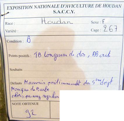exposition d'aviculture Foire ST MATTHIEU 27 et 28 Septembre 2014 - Page 3 650270P1150567