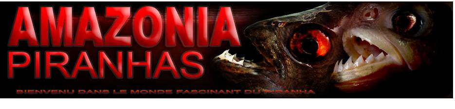 [Association Amazonia-Piranha]  650493headerentetecopie2