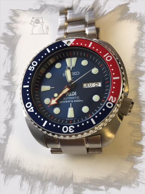Votre montre du jour - Page 6 653458TurtlePADI008