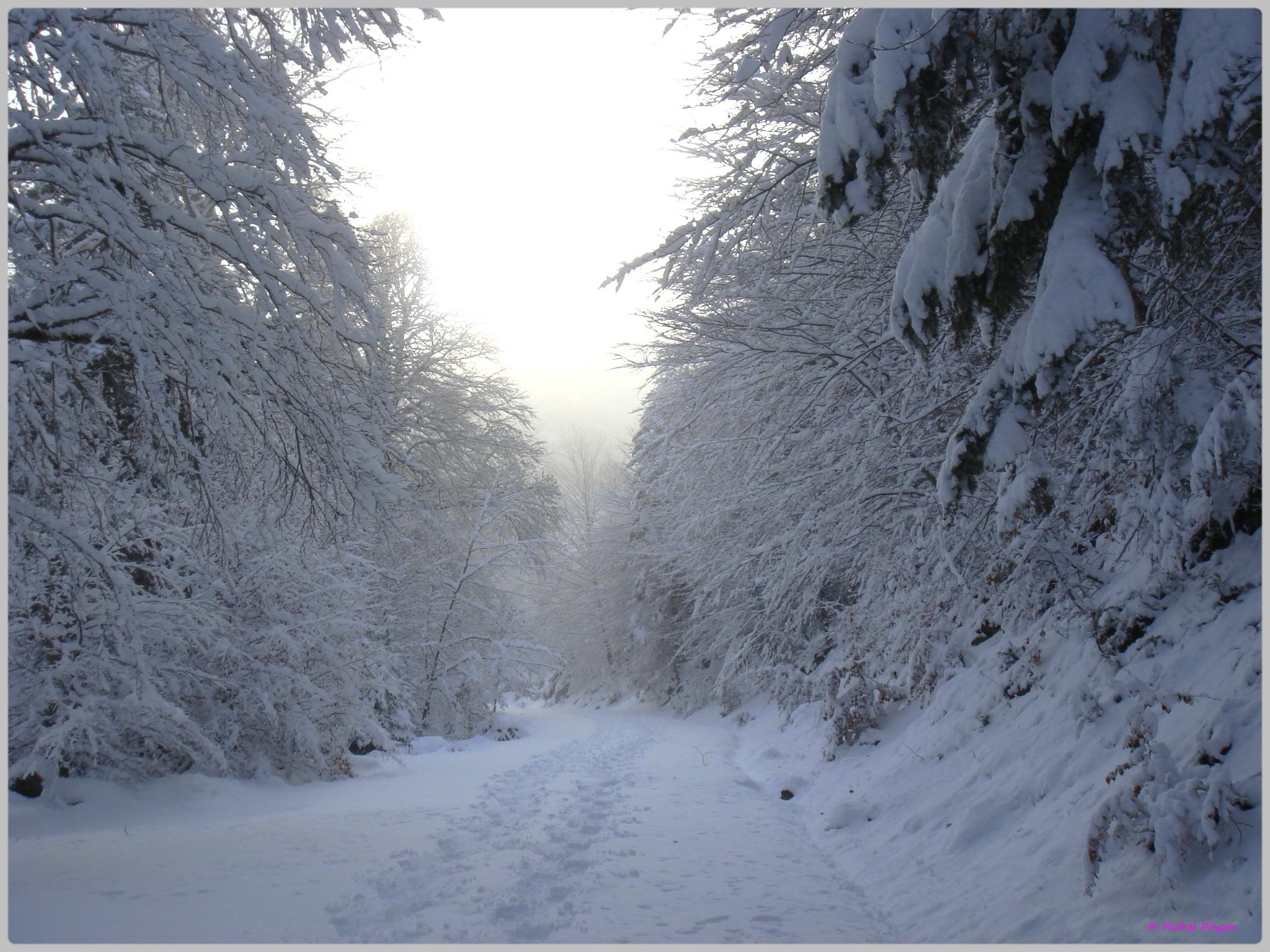 Une semaine à la Neige dans les Htes Pyrénées - Page 2 654458DSC00299