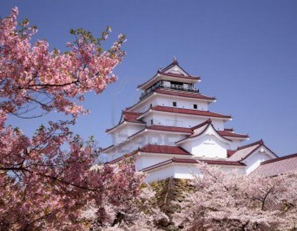 La Floraison des cerisiers au Japon - Sakura Zensen 657589CerisierduJapon