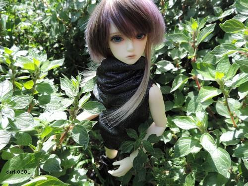 [Nouveau départ] Kazuki (p2) 659436jin1