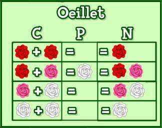 "Elyne ""OverLand"" : Les fleurs Hybrides 665982oeille10"