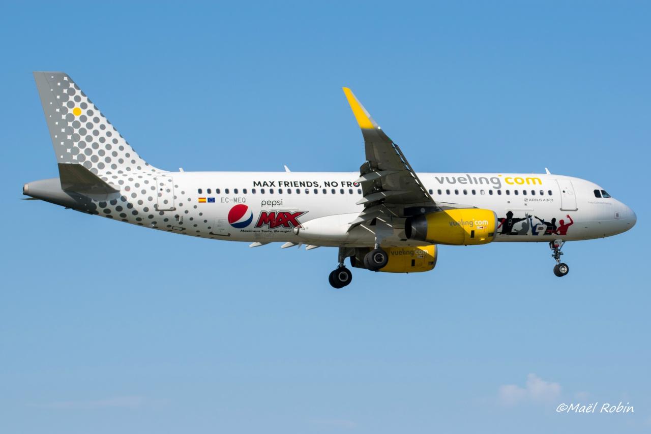 Rennes Saint Jacques Airport (LFRN/RNS) Août 2017   666024semainespotting003