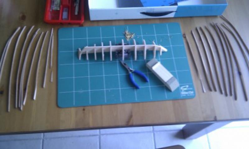 L'albatros kit de constructo 667209IMAG0288